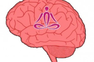 A side image of a human brain with an outline of a person meditating inside the brain.