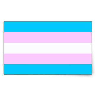 a blue, pink and white flag